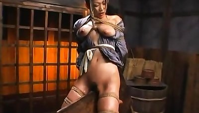 Muted asian plays with her hairy pussy