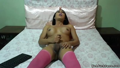Tanned shemale camgirl in all directions pink stockings added to pink bikini laying in all directions bed
